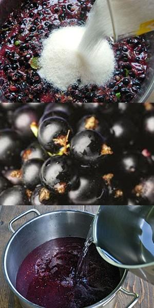 Технология приготовления вина из смородины