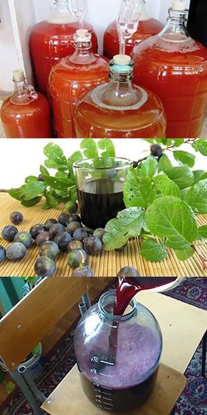 Вино из сливы пошаговый рецепт с фото