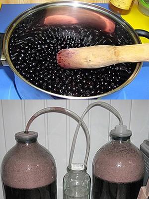 Технология приготовления вина из черноплодной рябины