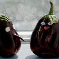 практические аспекты выращивания баклажанов