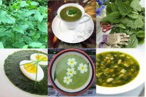 Зеленые щи с крапивой, щавелем, шпинатом: рецепты