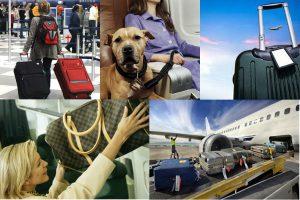 Правила перевозки багажа в самолете: что можно взять на борт