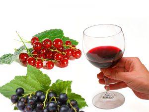 Вино из смородины в домашних условиях: технология, рецепты