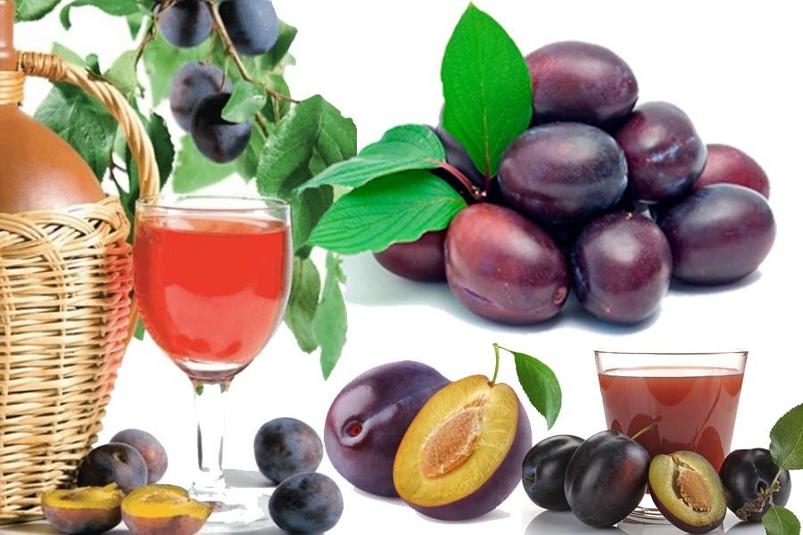 Как сделать вино из сливы в домашних условиях: рецепты, технология