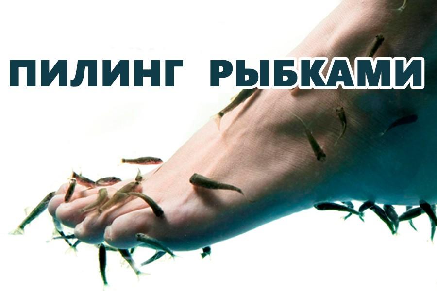 You are currently viewing Пилинг ног рыбками Гарра Руфа: суть процедуры, польза и вред