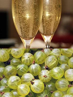 Игристое вино из крыжовника