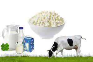 Как сделать творог из молока и кефира в домашних условиях