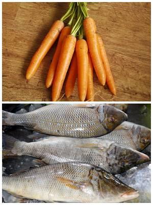 паровые котлеты из рыбы с морковью
