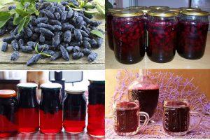 Компот из жимолости на зиму: рецепты на 3-литровую банку