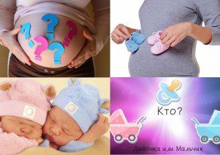 как определить пол будущего ребенка