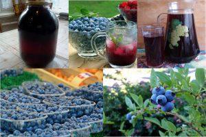 Компот из голубики на зиму: 7 рецептов (на 3-литровую банку)