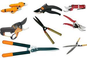 Как выбрать садовый секатор: виды инструмента, критерии качества