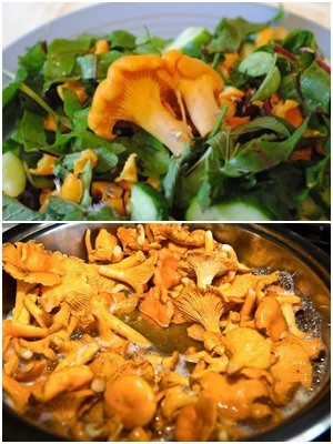 советы по приготовлению грибного салата