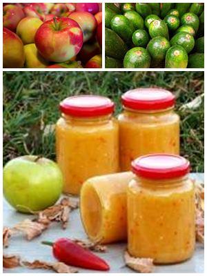 аджика из кабачков с яблоками