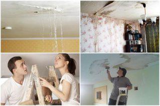 Ремонт потолка после протечки своими руками: советы мастера