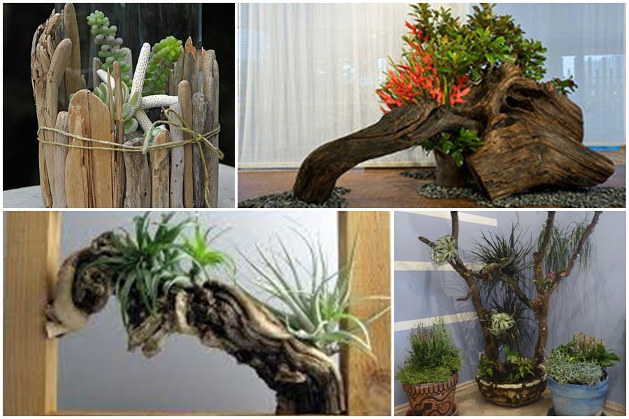 Рутарий в интерьере – стильный декор из корней и коряг своими руками