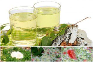 Read more about the article Окрошка на березовом соке: 5 оригинальных рецептов