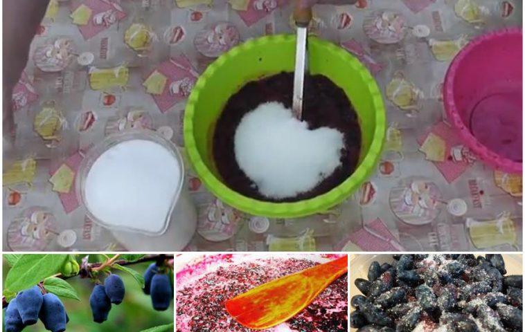жимолость, протертая с сахаром, на зиму