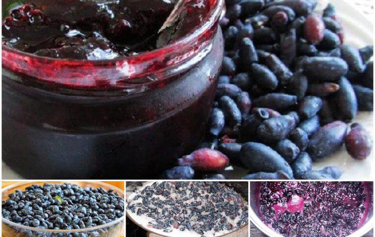 Варенье из жимолости «Пятиминутка»: 7 рецептов на зиму