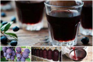 Вино из ирги в домашних условиях: 7 рецептов, технологические нюансы