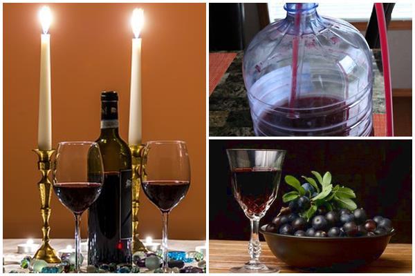 столовое и десертное вино из терна