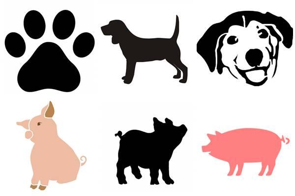 собака и свинья
