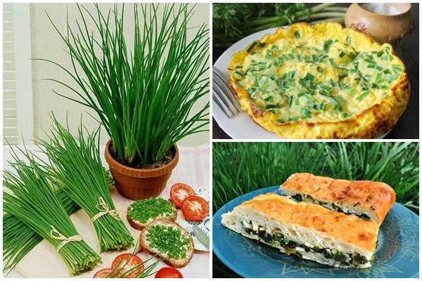 рецепты сезонных блюд из лука-слизуна