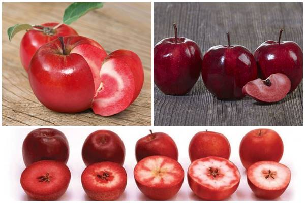 сорта яблонь с красной мякотью