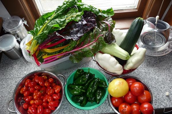 рецепты блюд из листовой свеклы