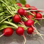 РедисЧерриэт F1: описание сорта, особенности выращивания, отзывы
