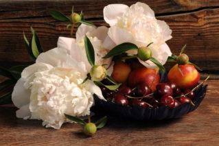 Варенье из лепестков пионов на зиму: рецепты, советы, польза десерта