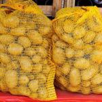 как защитить картошку от парши