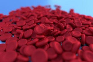 Гемоглобин от «а» до «я»: что это такое, его норма, как его повысить
