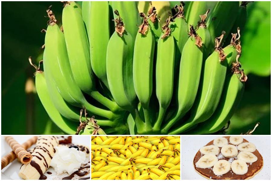 You are currently viewing Банан – это фрукт или ягода: место в ботанической и кулинарной классификации