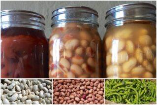 Фасоль, консервированная в собственном соку на зиму: рецепты, советы