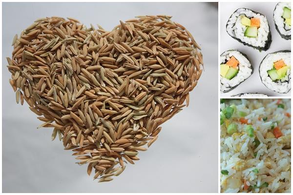 какой бывает рис: виды и сорта для разных блюд